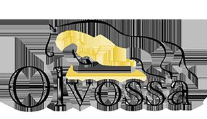 Olvossa Logo
